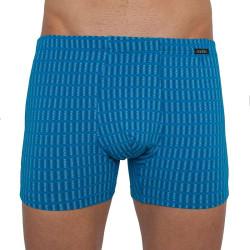 Pánské boxerky Andrie světle modré (PS 5261 A)