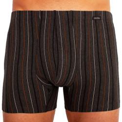 Pánské boxerky Andrie tmavě šedé, hnědé pruhy (PS 5253 C)